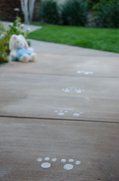 Easter bunny footprint tracks