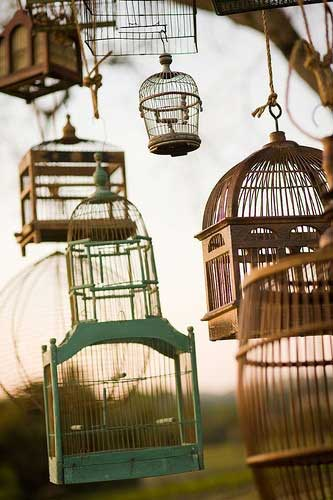 Birdcages as Tree Decorations Decorating with Birdcages   12 Creative Ideas for Everyday Use