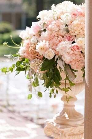 Blush Roses3