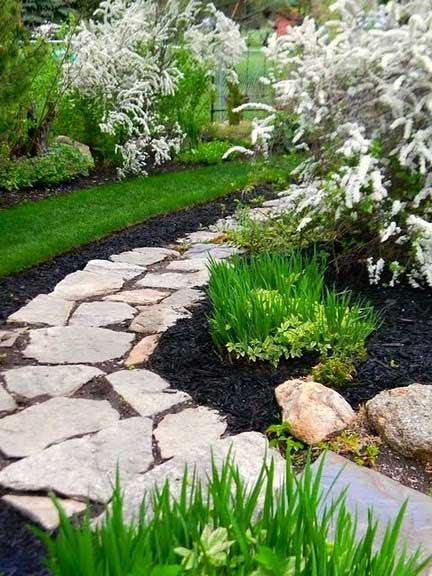 Black mulch in landscaping