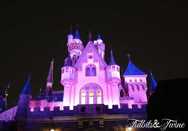 Disneyland Castle Tidbits&Twine