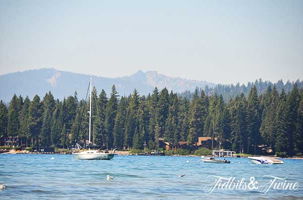 Tidbits & Twine Lake