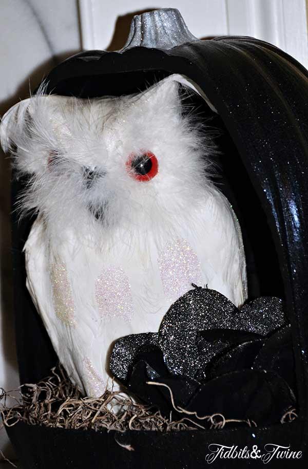 Tidbits&Twine Pumpkin Owl