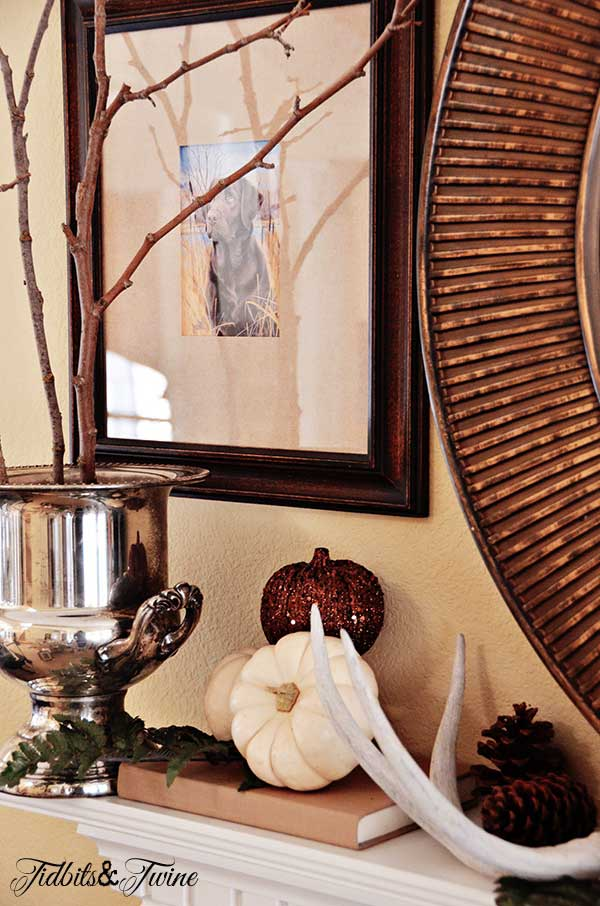 Tidbits&Twine Fall Mantel 3b