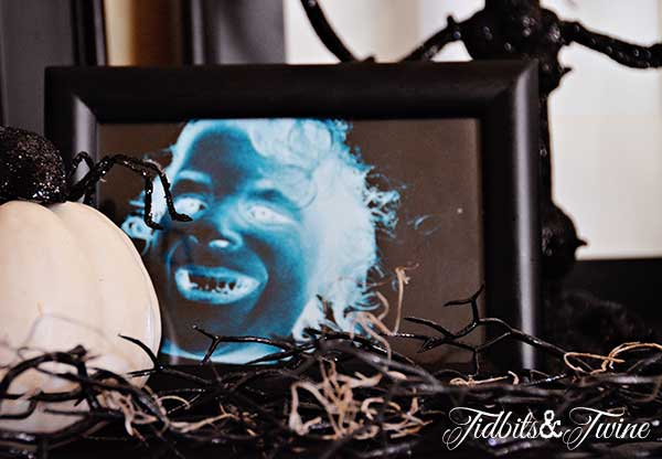 Tidbits&Twine Halloween Display 2