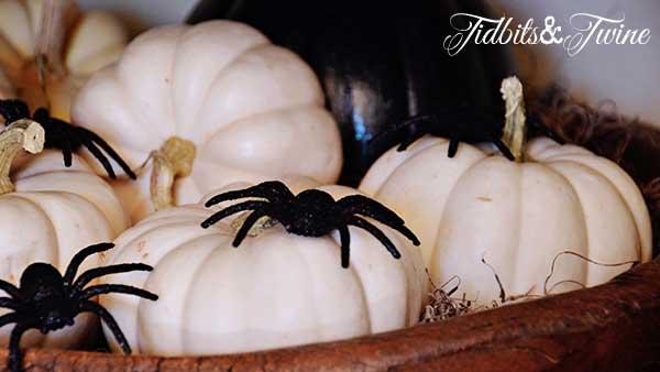 Tidbits&Twine Halloween Pumpkins and Spiders