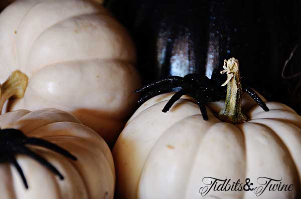 Tidbits&Twine Pumpkins and Spiders