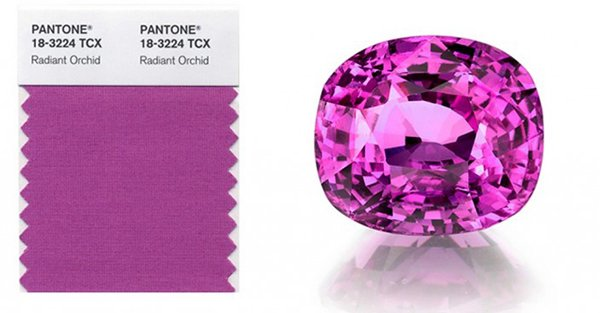 Pantone 2014 Color of the Year - Radiant Orchid