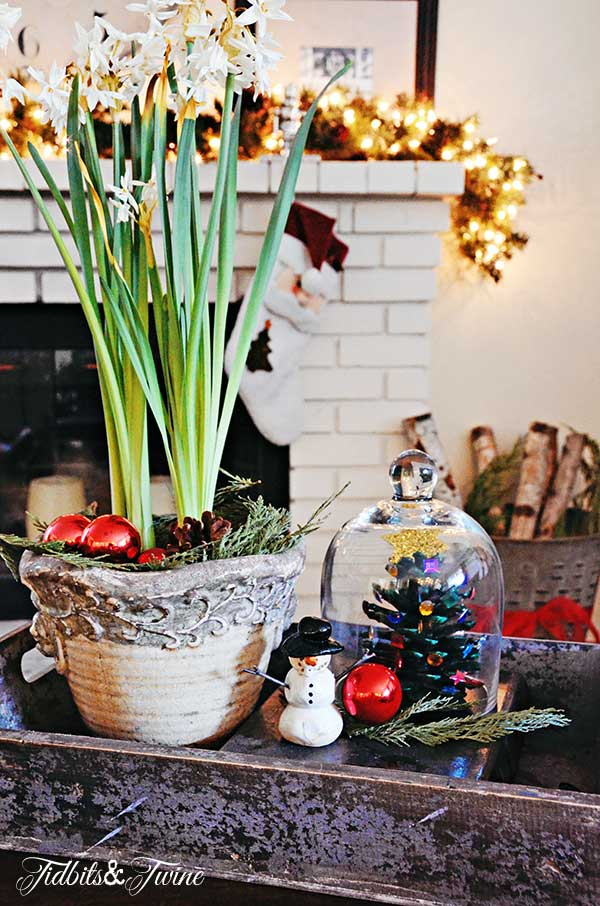 Tidbits&Twine-Christmas-Coffee-Table-2
