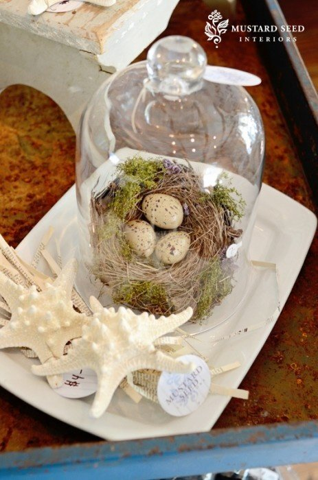 Bird Nest Cloche