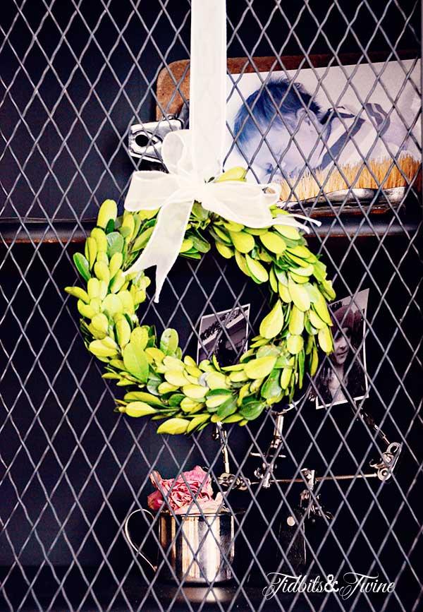 TIDBITS-&-TWINE-Guest-Room-Boxwood-Wreath
