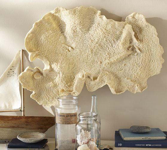 Large piece of fan coral hanging on the wall above jars with seashells and a small wooden boat
