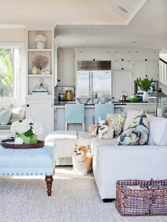 Kitchen and great room in whites and light blue with two Corgi dogs on the sofa