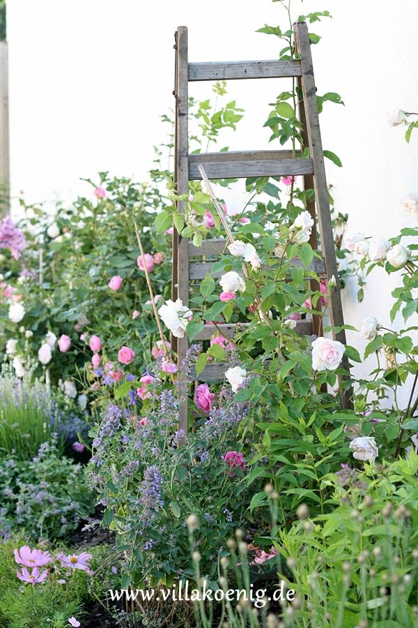 Vintage Ladder Outdoor Garden