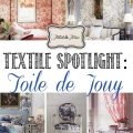 TIDBITS-&-TWINE---Textile-Spotlight-Toile