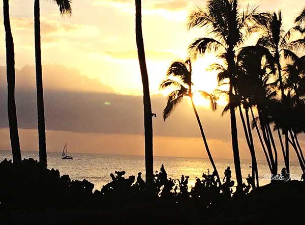 TIDBITS-&-TWINE-Sunset
