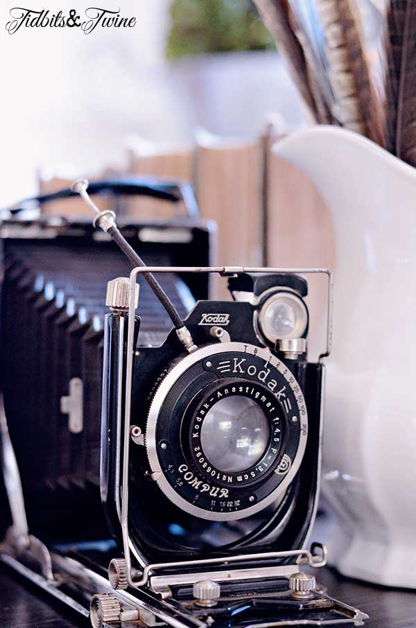 Shopping for Vintage Cameras, Ironstone & More