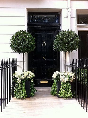 Black front door with transom above and large potted topiaries flanking the door