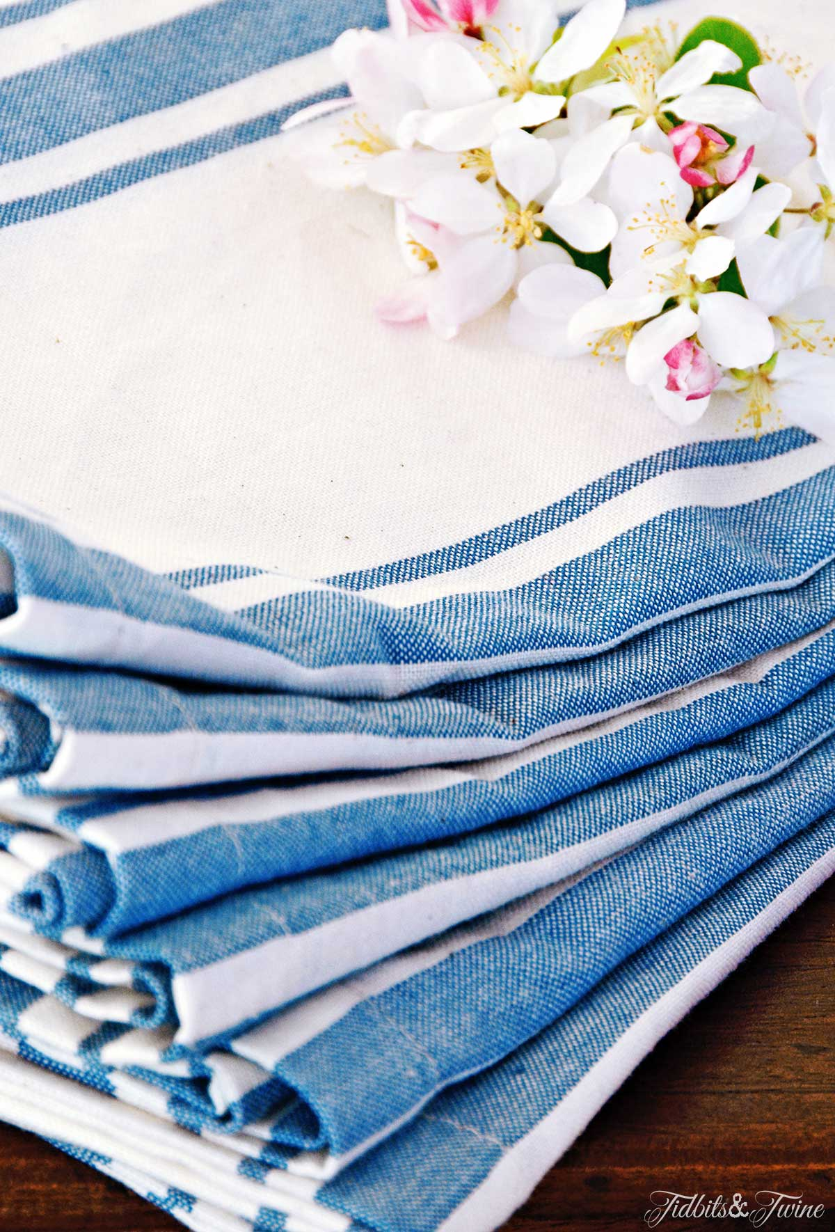TIDBITS&TWINE Blue Striped Napkins