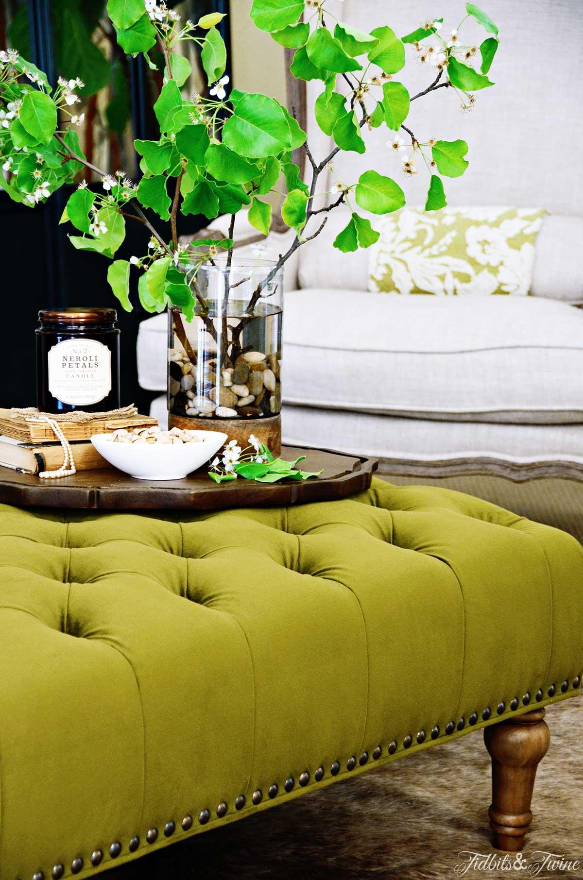 TIDBITS&TWINE-Tufted-Ottoman-Coffee-Table-Display