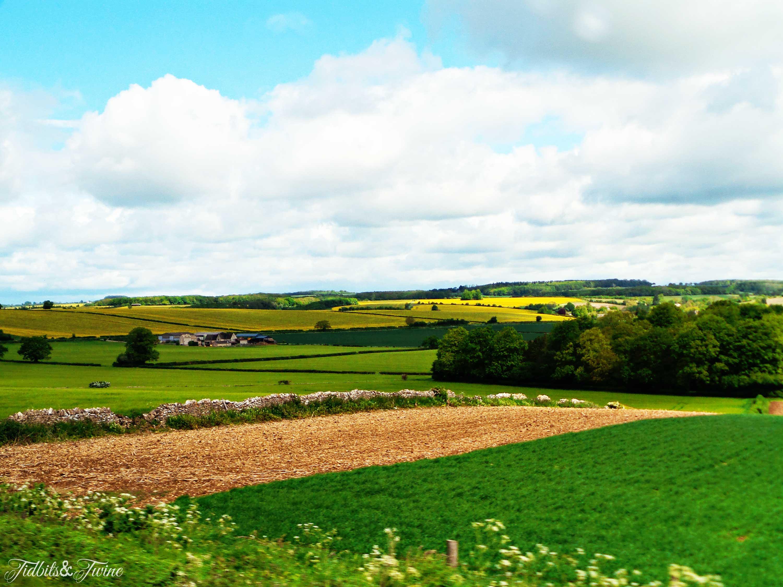 TIDBITS&TWINE---English-Countryside