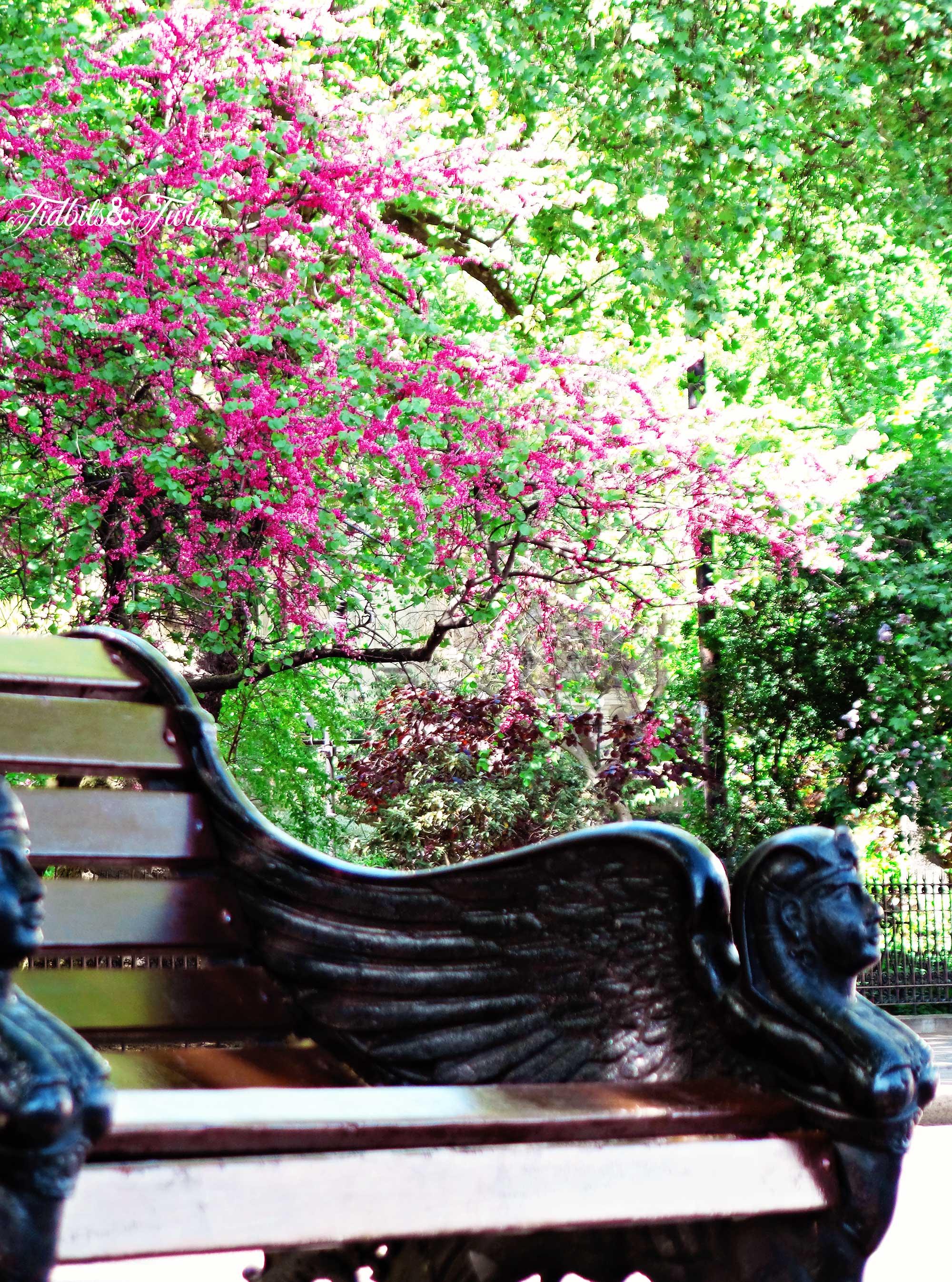 TIDBITS&TWINE---Park-Bench