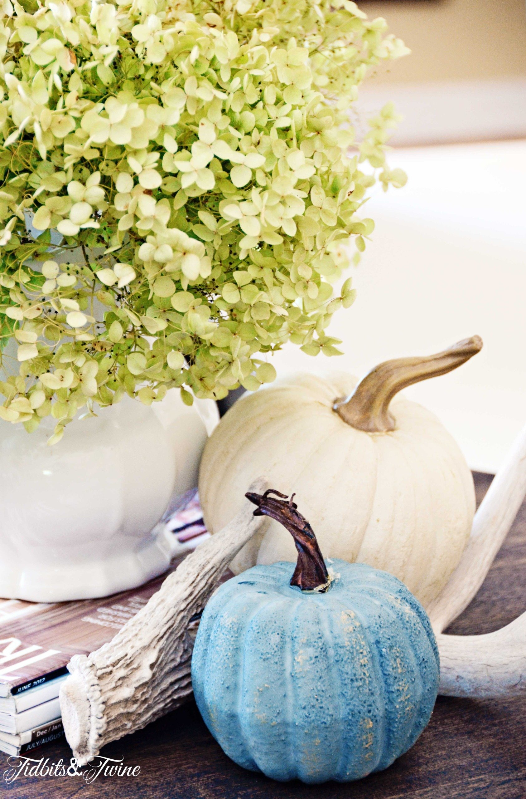 white pitcher with green dried hydrangea and white and blue pumpkins at the base with antler