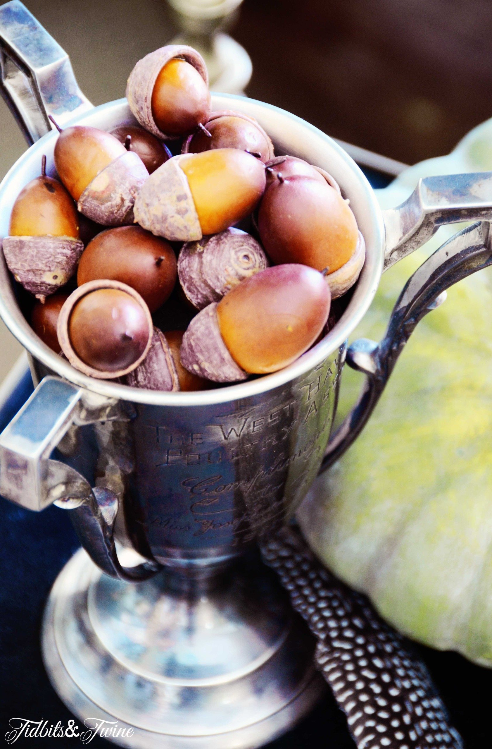 Vintage trophy cup holding acorns for Fall decor