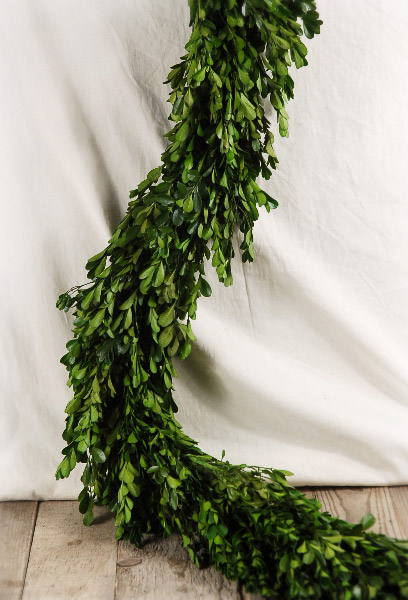 Save-on-Crafts Preserved Boxwood Garland