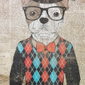 TIDBITS&TWINE-Gallery-Wall-Dog-Wearing-a-Sweater