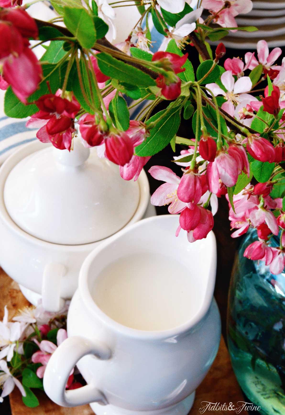 TIDBITS&TWINE-Blossom-Branches