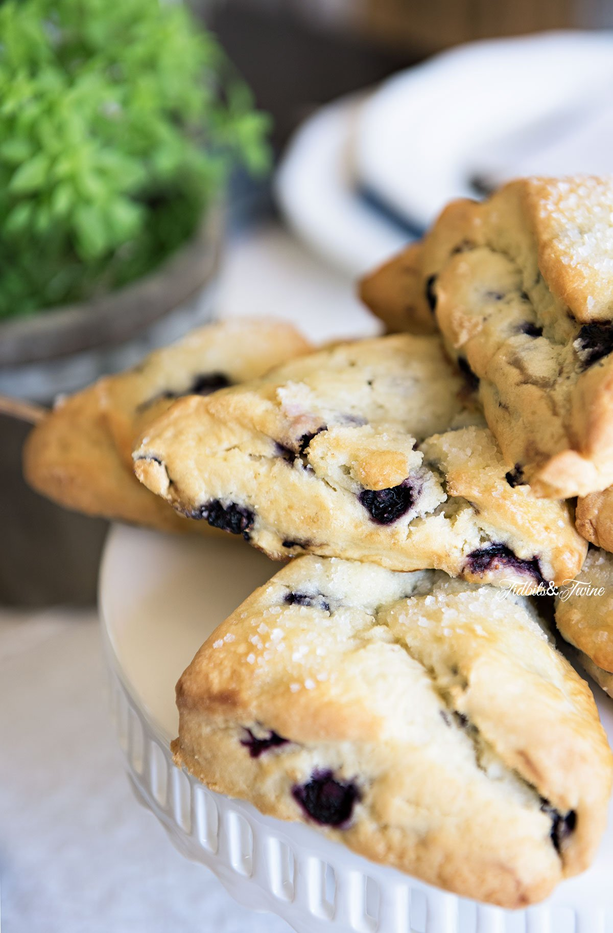 TIDBITS&TWINE Spring Dining Table Blueberry Scones