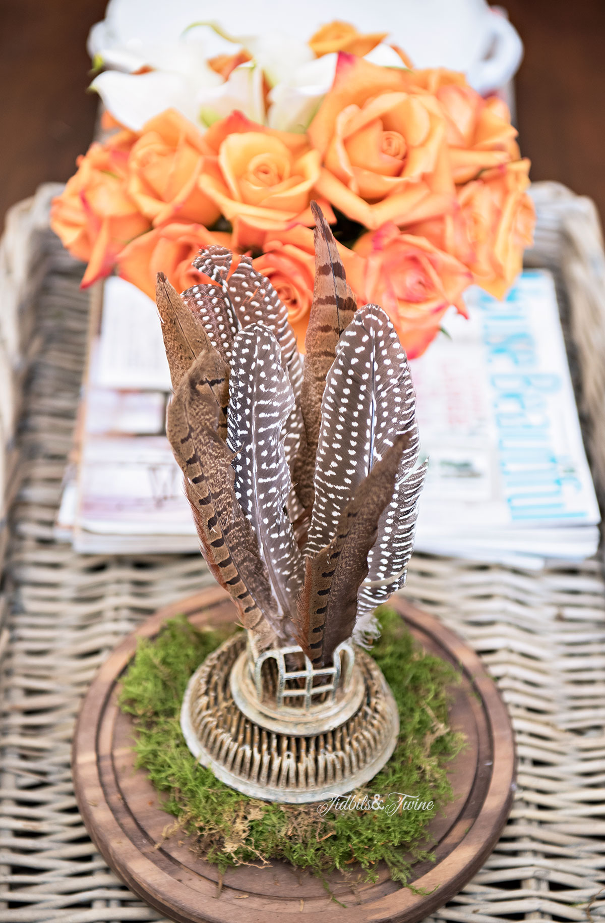 Tidbits&Twine-Spring-2015-Living-Room-Cloche-Feathers-and-Roses