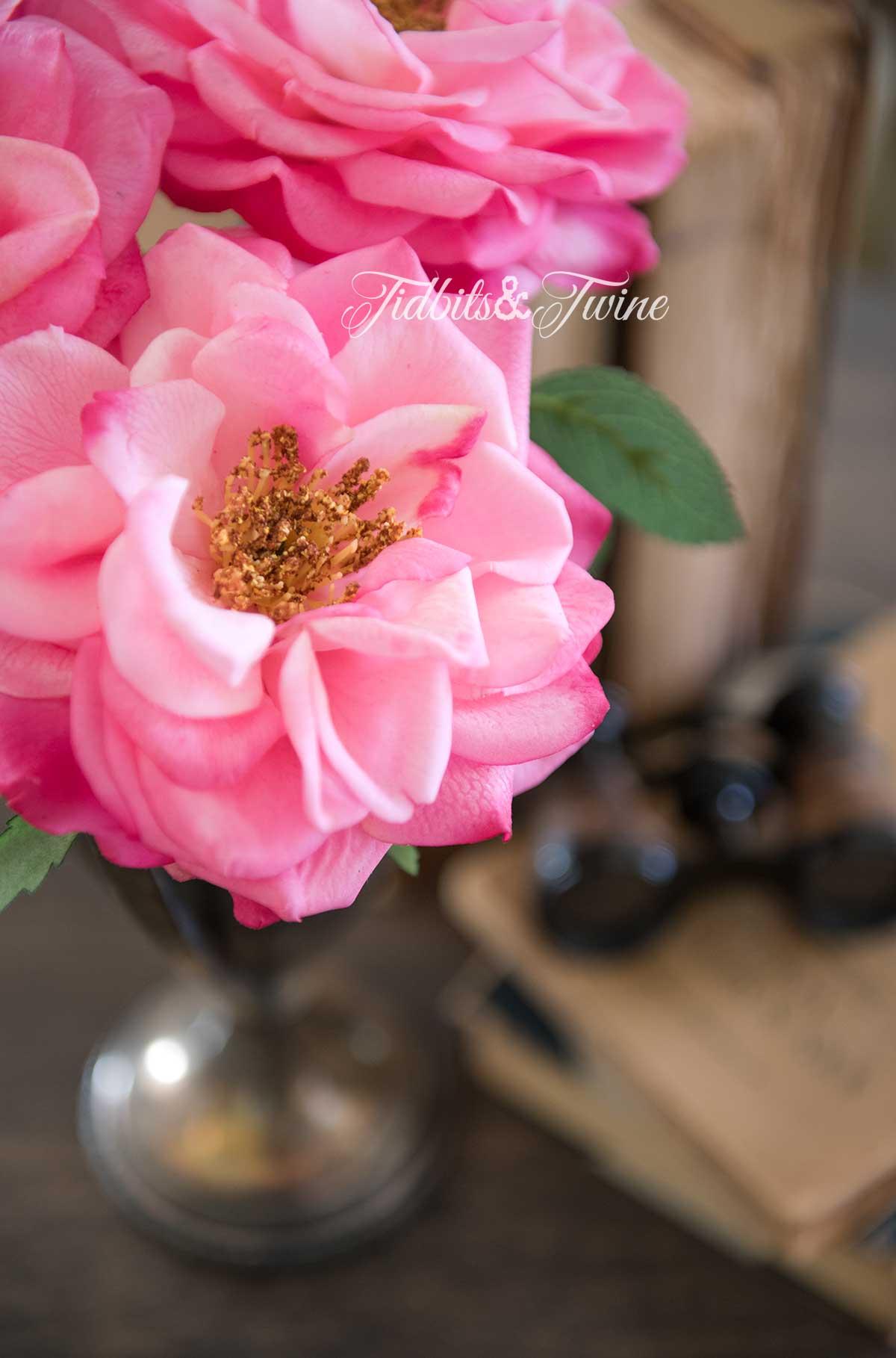 Tidbits&Twine-Pink-Roses