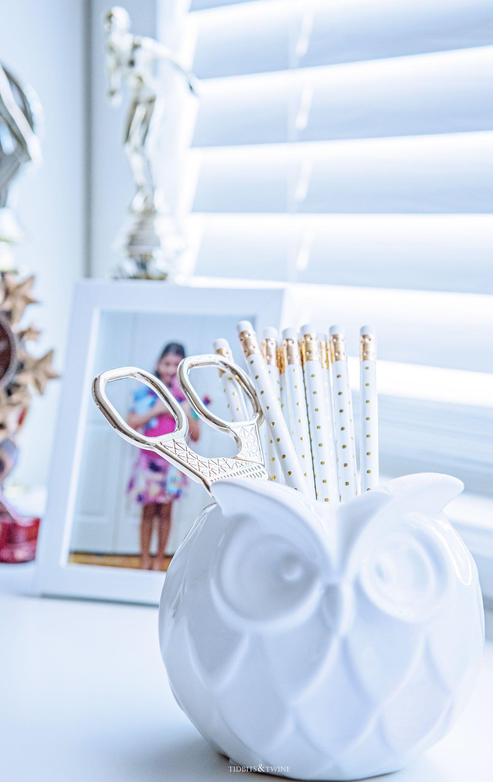 White Owl Vase as Pencil Cup in Teen Girl Bedroom