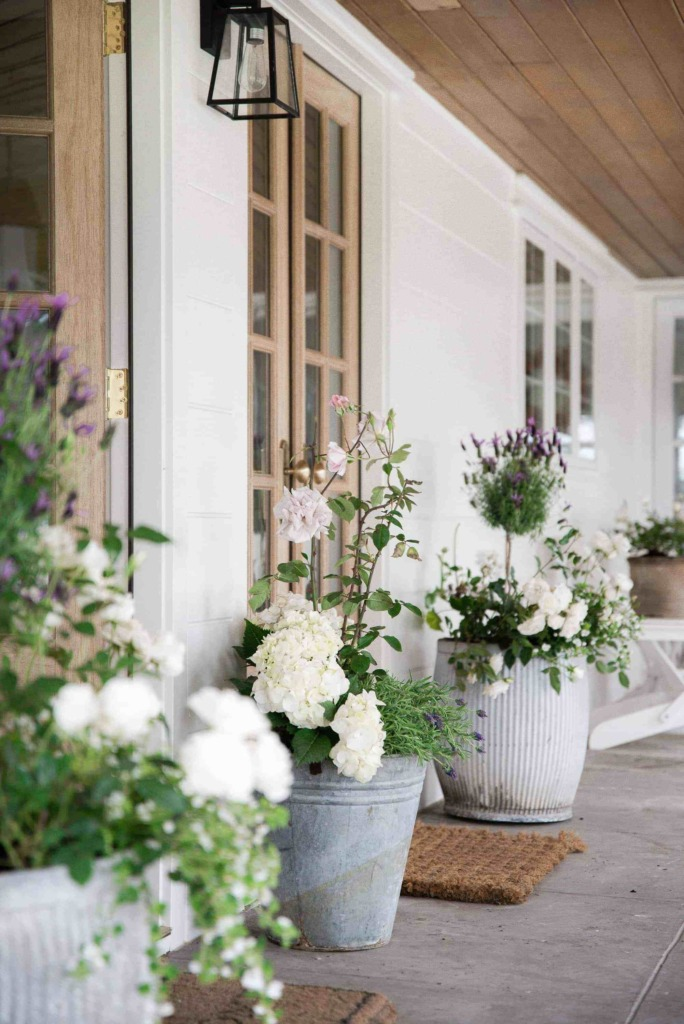Front porch with rose and lavender flower pots