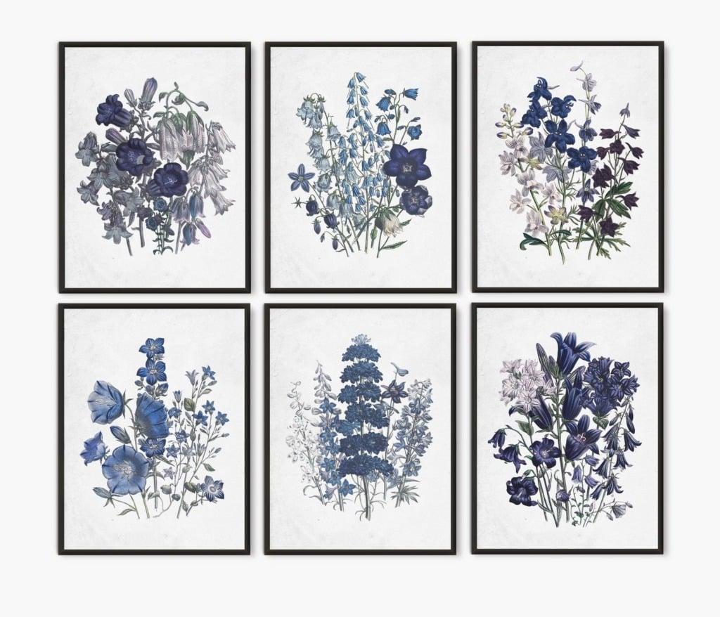 Artwork of six blue flower botanical images