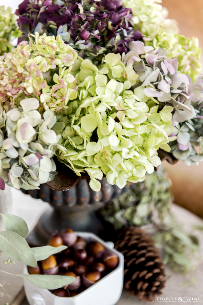 Vintage urn holding dried hydrangeas with bowl of acorns underneath