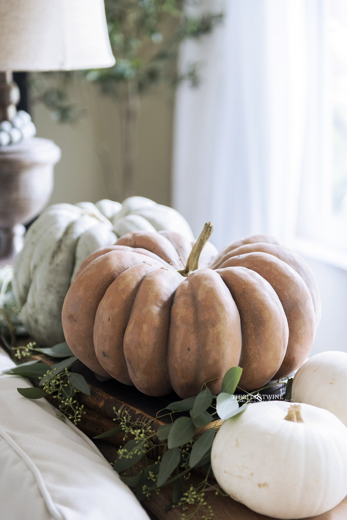 Fall decor of two large pumpkins one orange one green on a console table behind a sofa with eucalyptus
