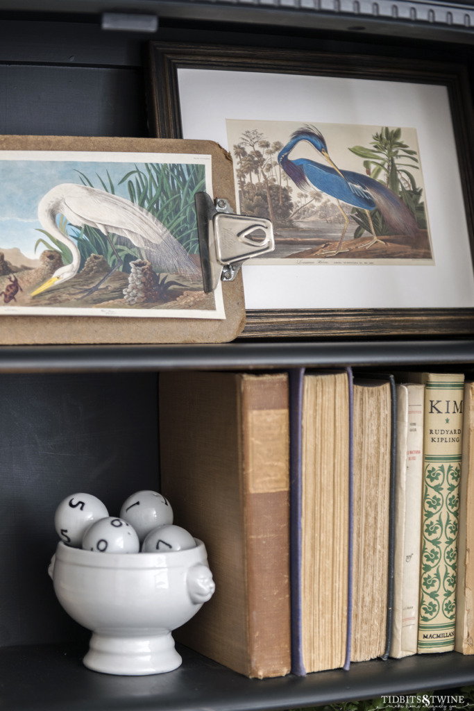 Closeup of birds of america artwork on styled shelves with books