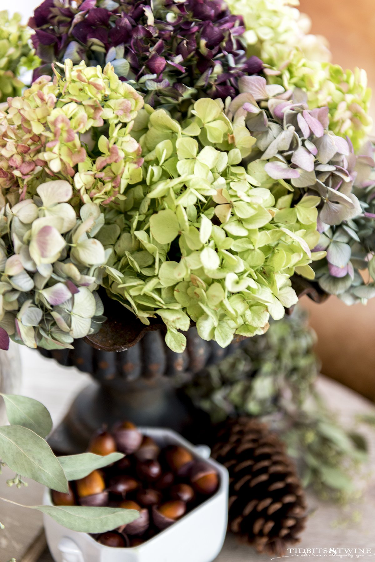 bouquet of dried hydrangea with green pink and purple flowers in an iron urn with acorns below as part of vignette