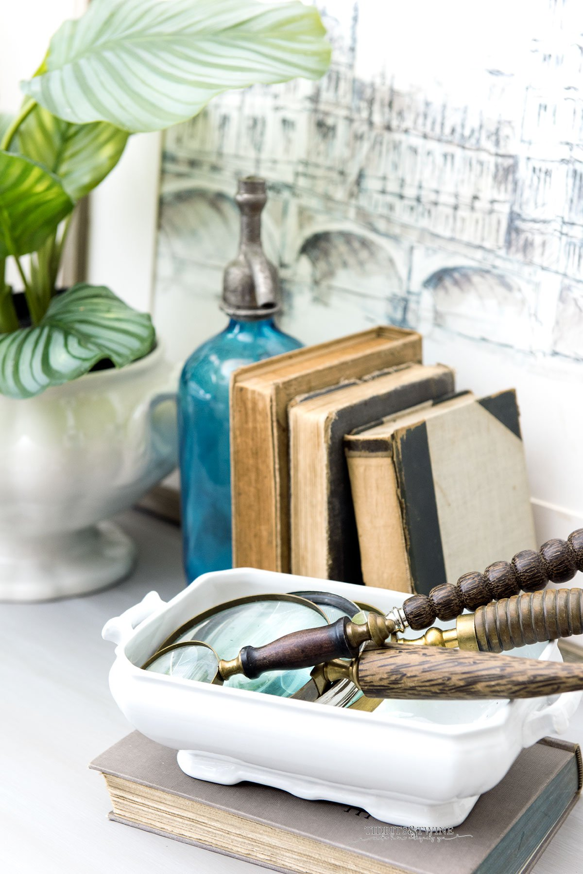 Vignette of antique books next to white pot holding green plant and another white bowl holding antique magnifying glasses