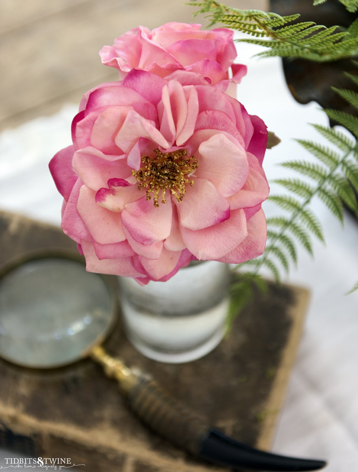 Closeup of a pink fake rose with yellow pollen center with an old book and magnifying glass in the background and a fern leaf