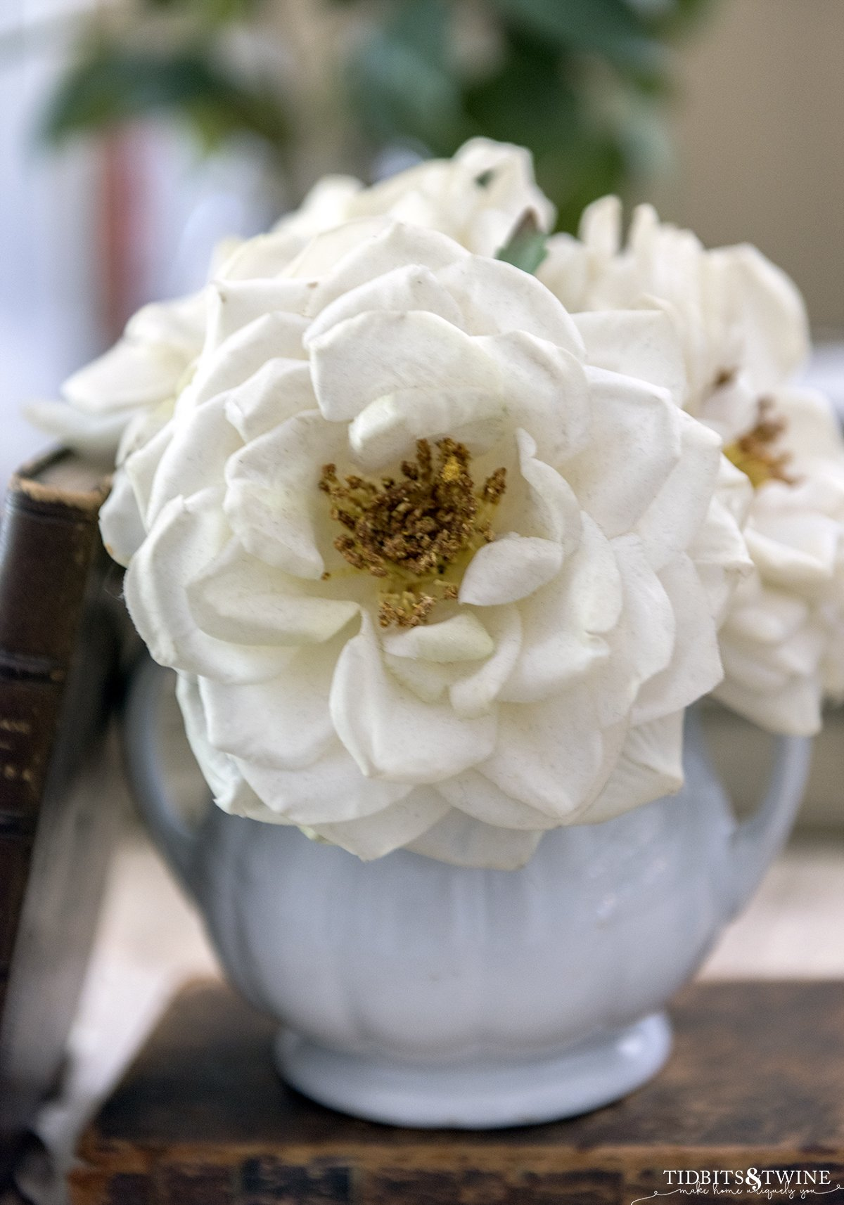 closeup of a fake white rose with a yellow pollen center in a white ironstone sugar pot next to antique leather books