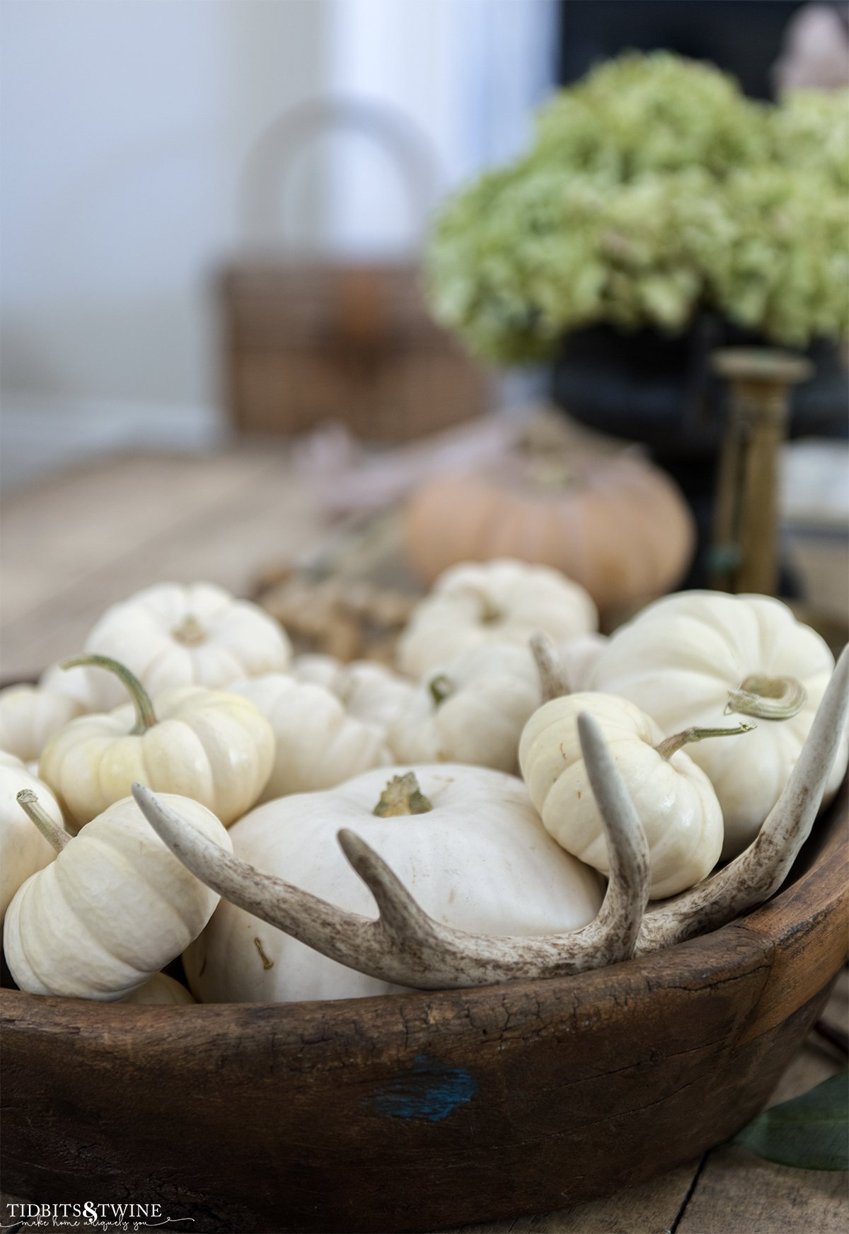 wooden dough bowl full of small white pumpkins and an antler with orange pumpkin and dried hydrangea in background