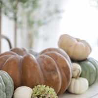 large terracotta fairytale pumpkin on dining table next to green pumpkins with small white pumpkins mixed in