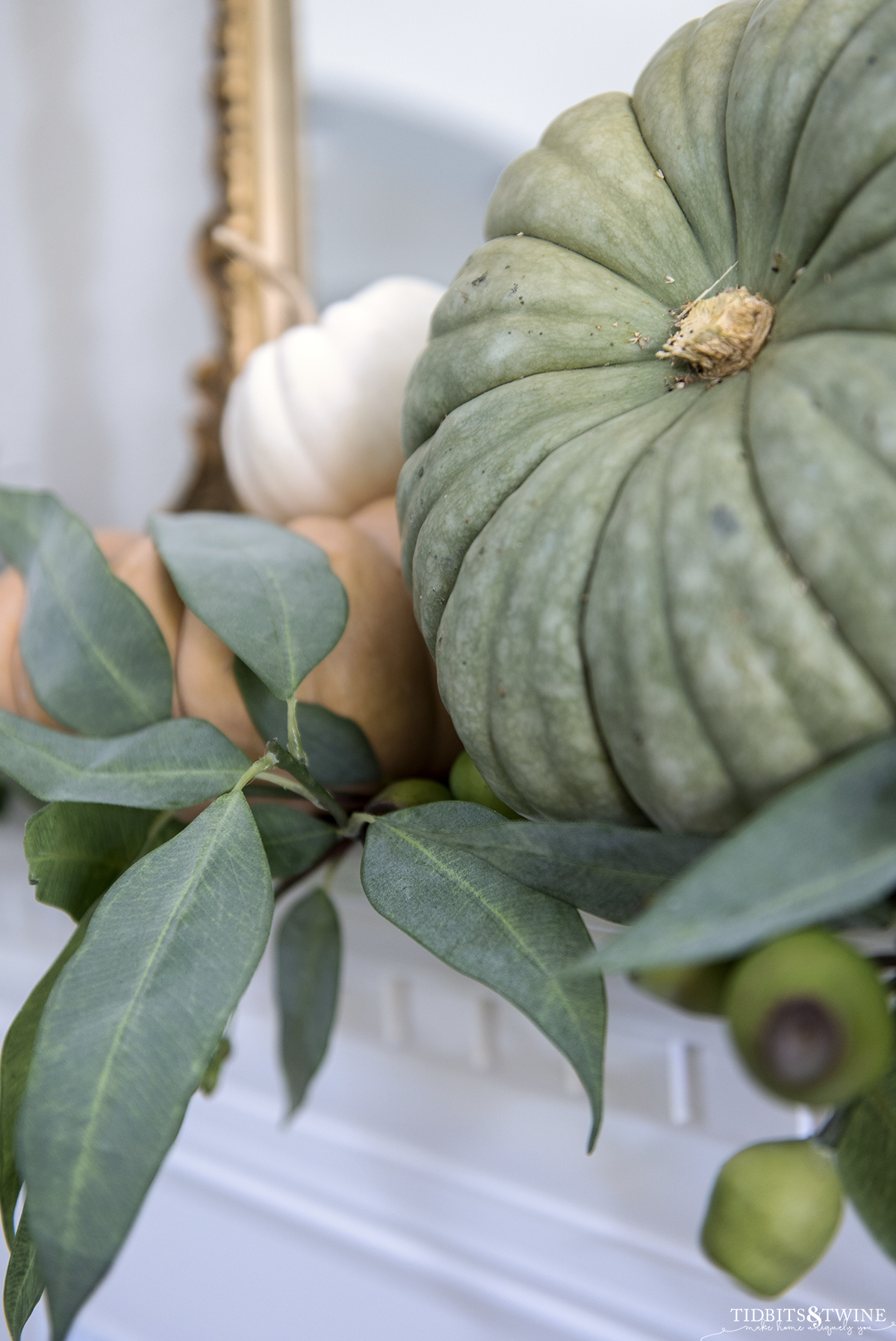 closeup of green pumpkin on a mantel with orange and white pumpkins in background and fake eucalyptus