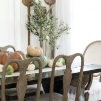 french dining room with brown wood chairs and trestle table with pumpkins running down center of table and olive tree in corner