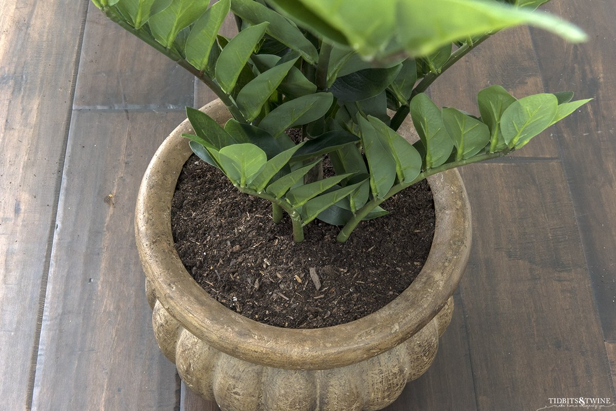 artificial zz plant secured in a pot with dirt to look real