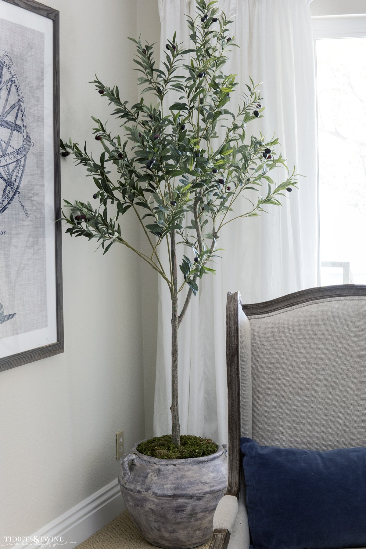 artificial olive tree in the corner of living room in a clay pot with moss on top to make tree look real